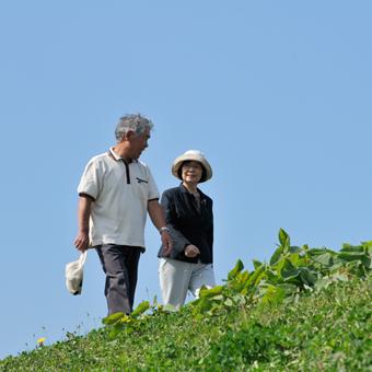 青汁畑は健康にいい効果がいっぱい!